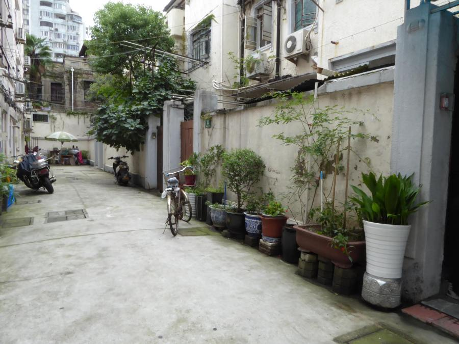 Shanghai / nice backyard